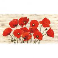 laminas para cuadros de flores modernos french poppies